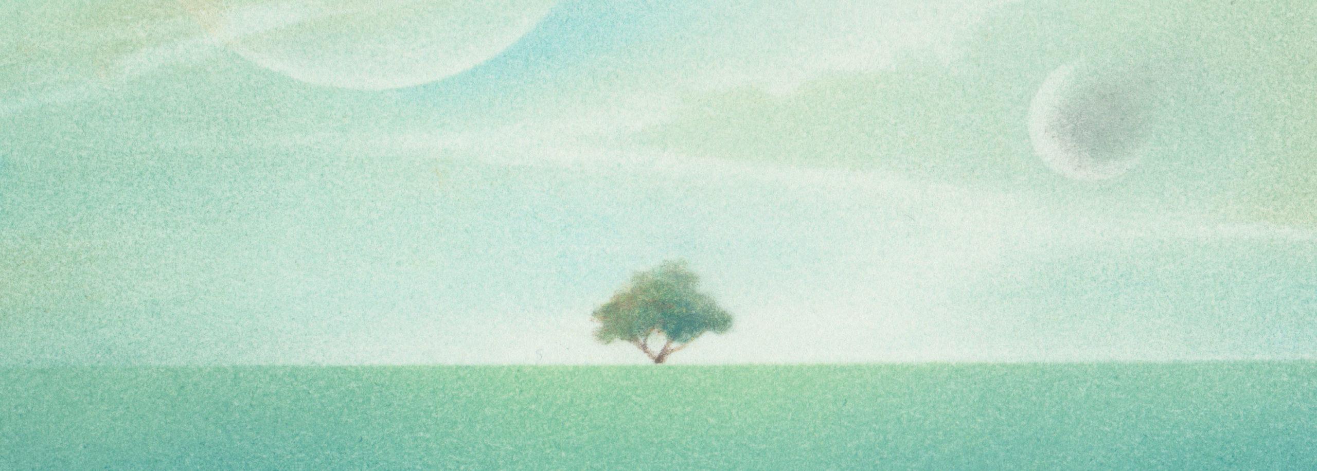 white view - 横長