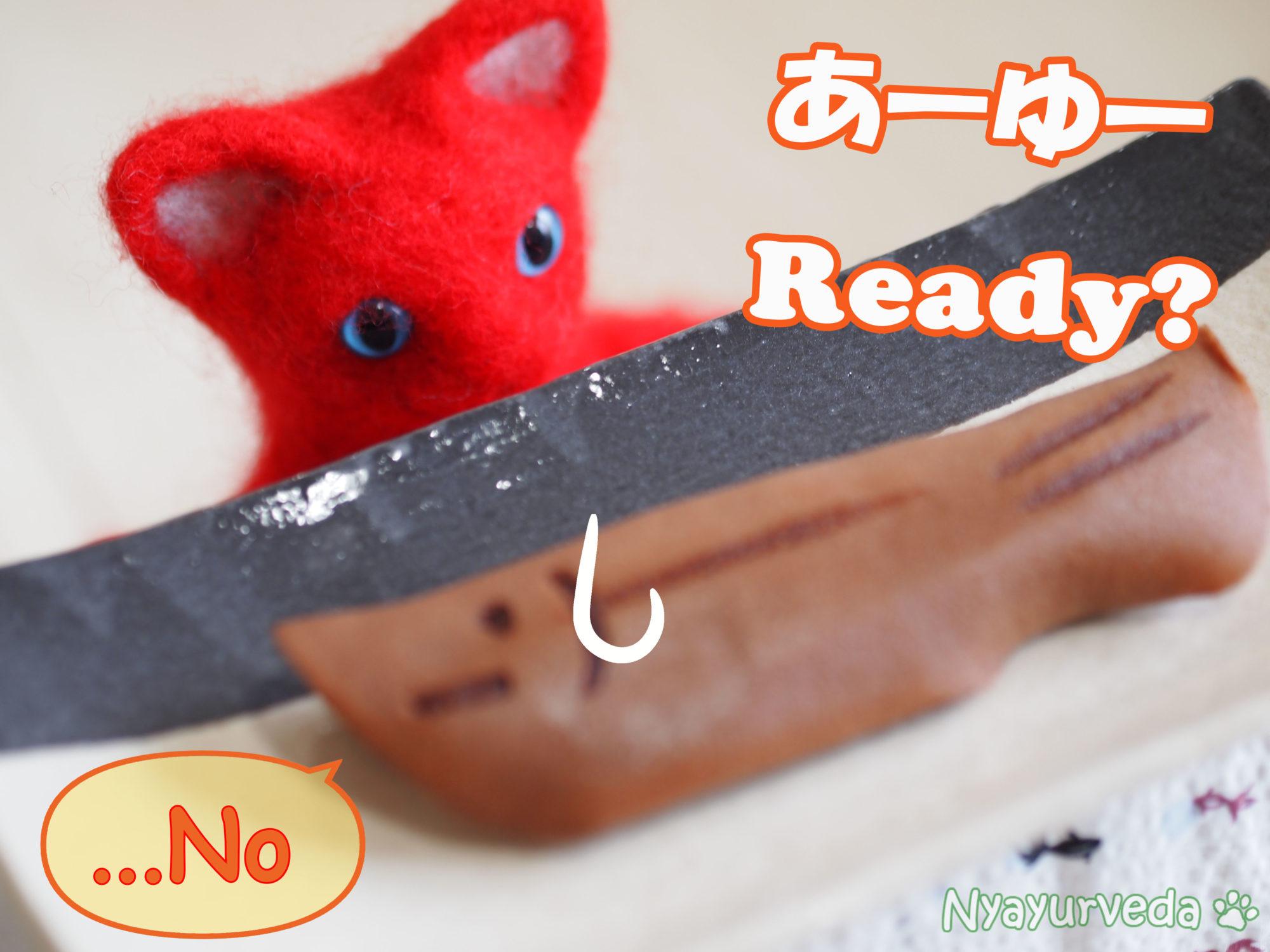 あーゆー・れでぃ?Are You Ready?